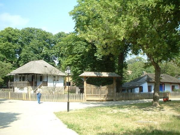 Национальный деревенский музей Димитрие Густи
