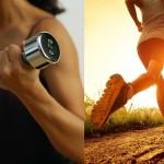 что лучше кардио или силовые тренировки