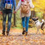 Как похудеть с помощью ходьбы