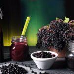 Лечебные свойства чёрной бузины