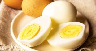 сколько яиц в день можно съедать