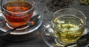 какой чай полезнее черный или зеленый